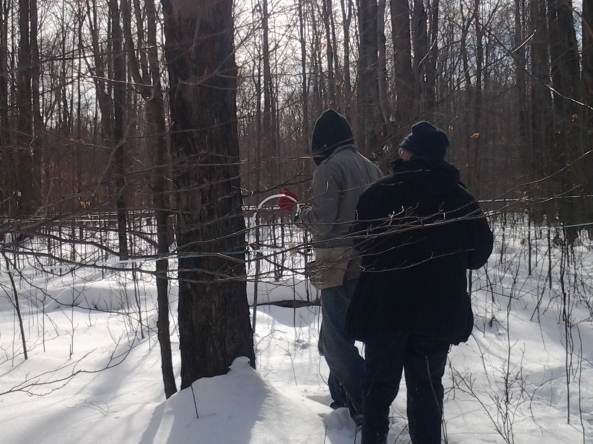 Media Magic's David Walker filming tree tapping crew at Bissell Maple Farm
